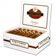 Сигары Flor de Copan Torbusto